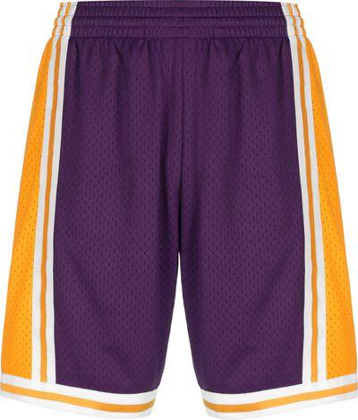 Swingman Los Angeles Lakers